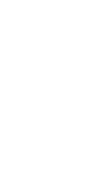 Molicious Pineapple